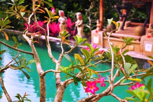 Bali: Hotel gardens are fabulous