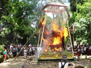 Flaming attraction: This cremation was big news when I reached Ubud. The body, already buried in the Monkey Forest, was exhumed and placed in a decorated bull, as has been done for centuries, before the lot was set alight.